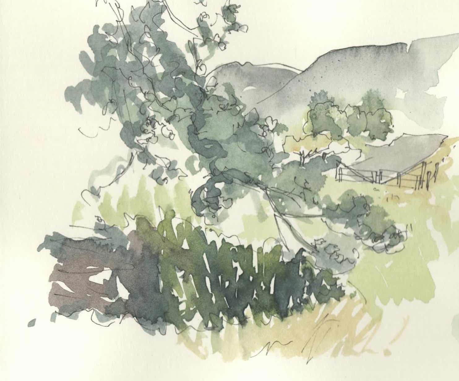 Hiyu Wine Farm The Understory